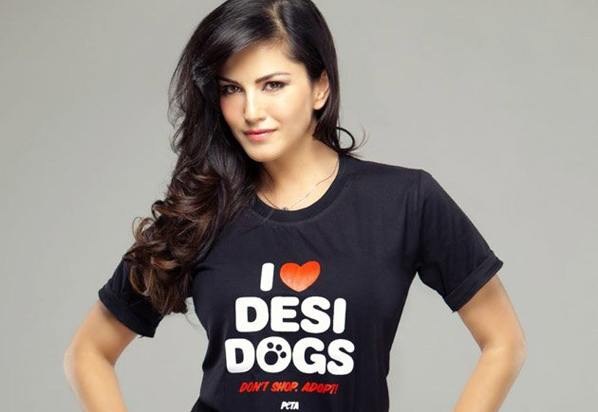 Sunny Leone Biography, Wiki, Dob, Family, Profile, Movies List-6516